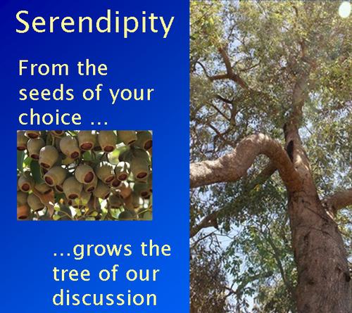 Serendipityb
